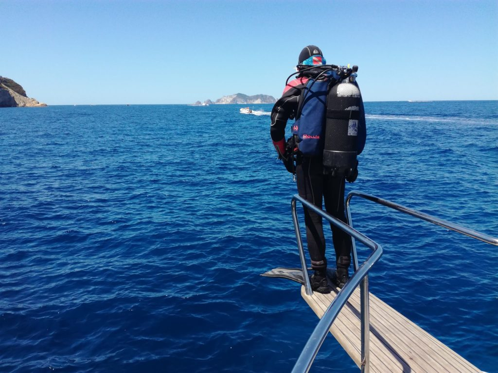 Immersioni a Ponza Palmarola Zannone Ventotene con Oceania