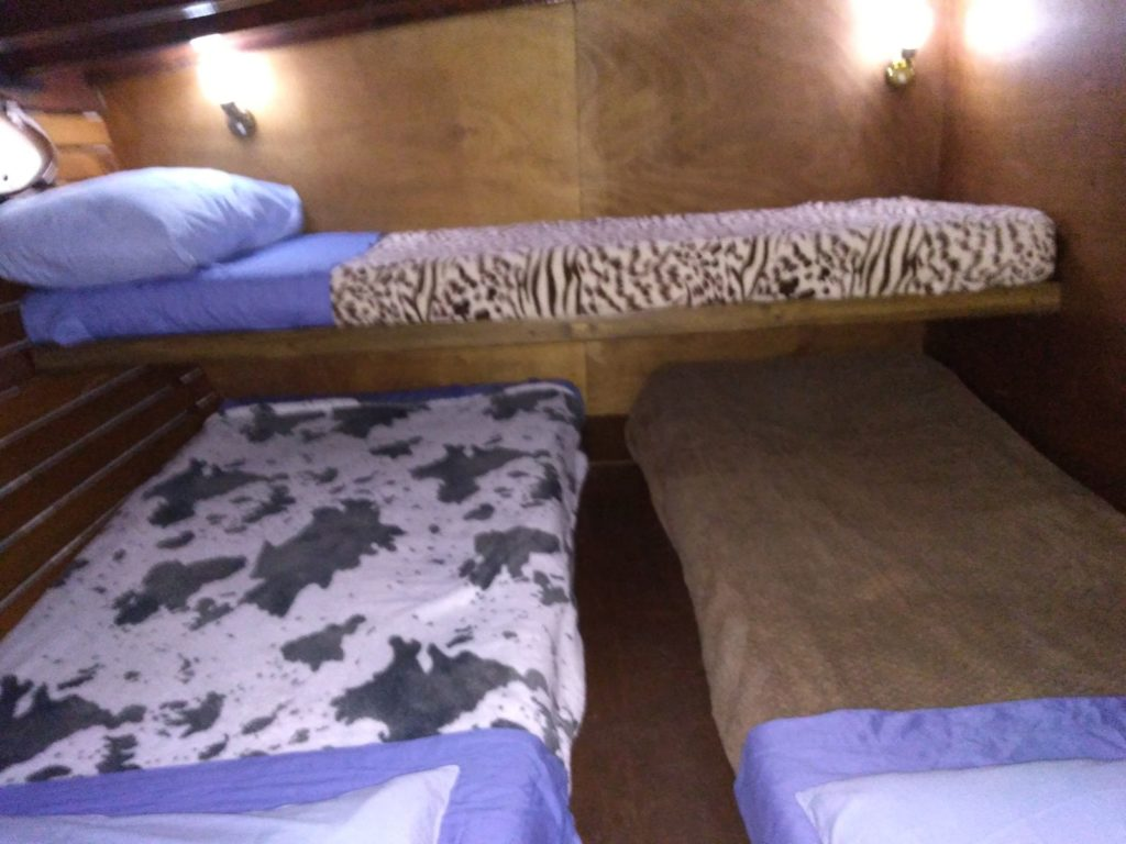 Barca per escursioni e immersioni a Ponza Palmarola Zannone Ventotene con Oceania